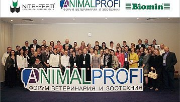 ANIMALPROFI in the cultural capital